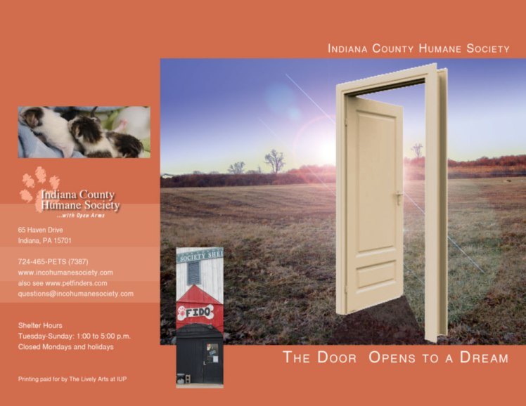 shelter_brochure1_b-copy-1